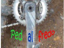 Pedalfredo