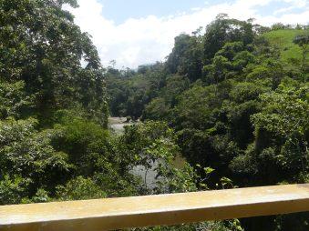 Wieder über einen Fluss
