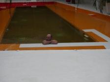 Michael nützt sofort den Pool,,,